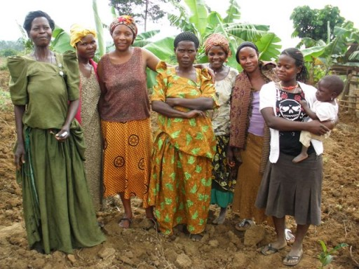 SVI is a non-profit international volunteer organization projet_agriculture_volontaires_uganda.jpg