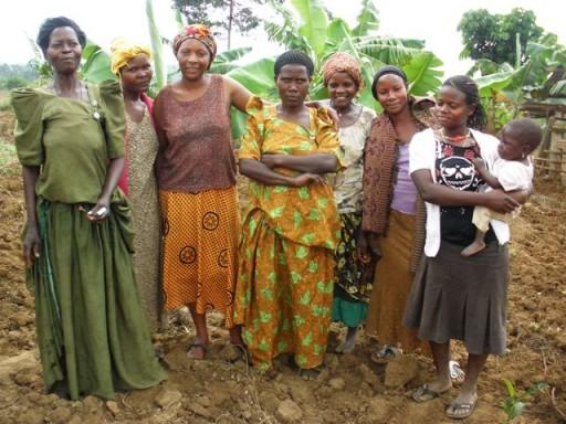 Le SVI est une association de volontariat international non commerciale projet_agriculture_volontaires_uganda.jpg